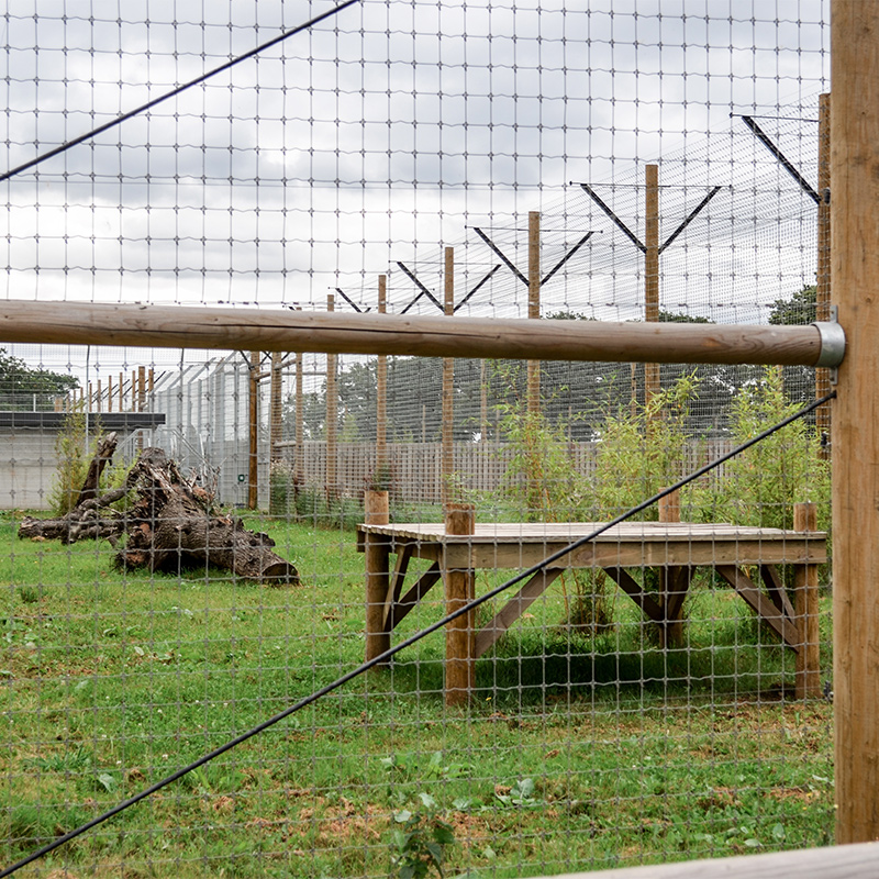 fenced zoo enclosure