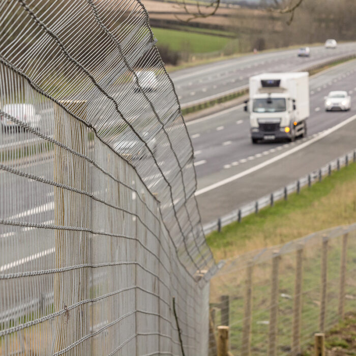 badger fencing by motorway