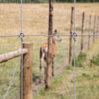 Deer_fencing_gallery_5