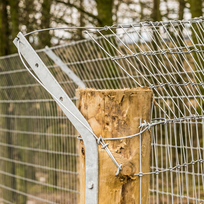 Otter_fencing_gallery_4