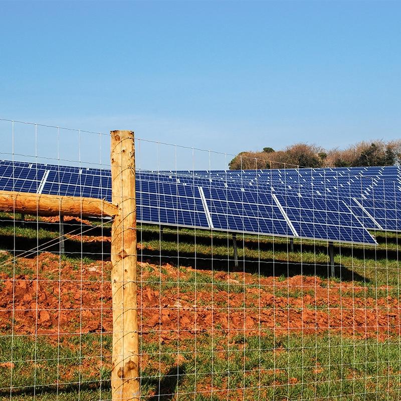 Solar_farm_fencing_gallery_1