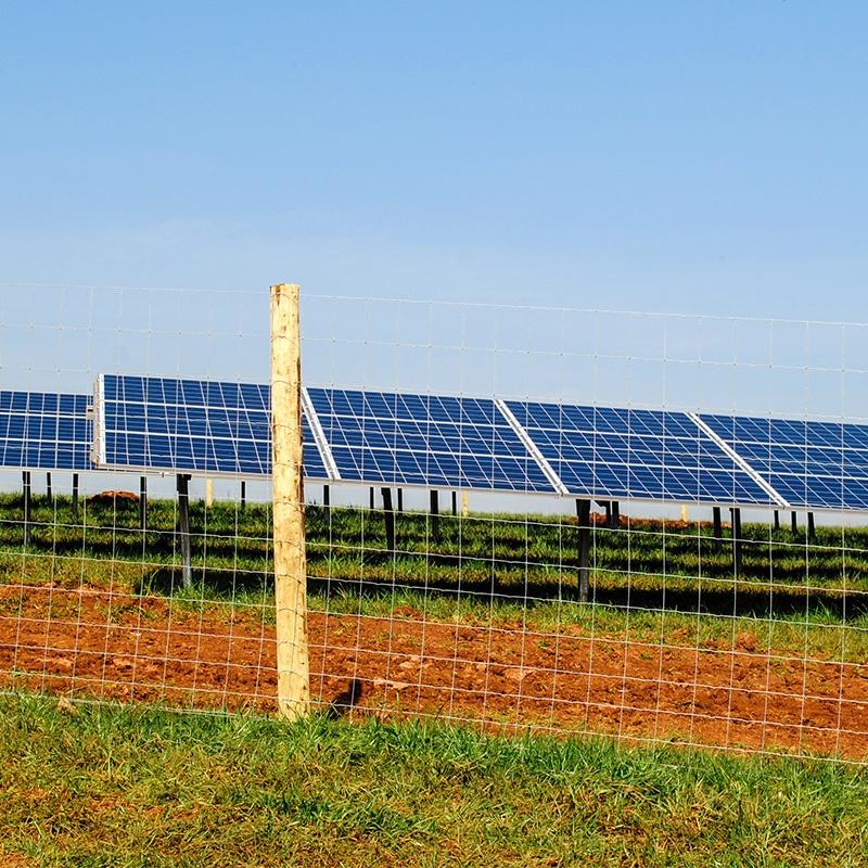 Solar_farm_fencing_gallery_6