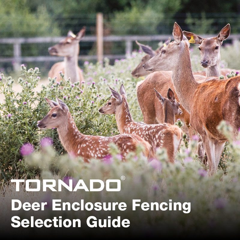 Deer_enclosure_selection_guide_main