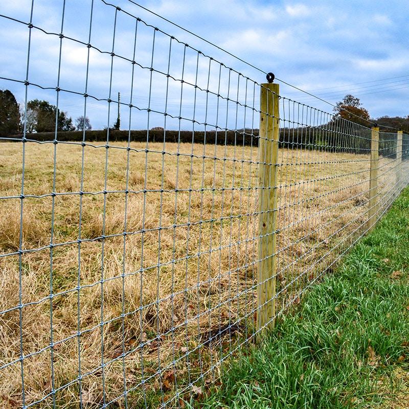 Horse_fencing_gallery_3