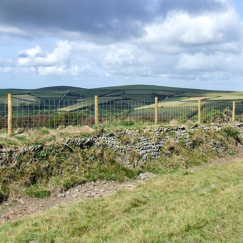 landscape with sheep fencing