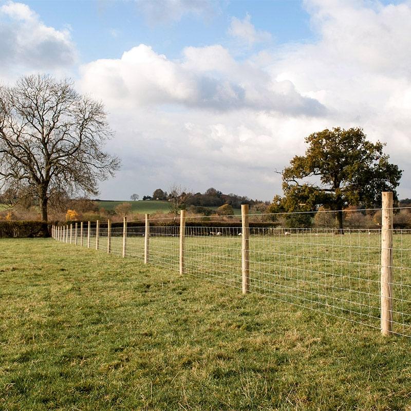 Livestock_fencing_gallery_4