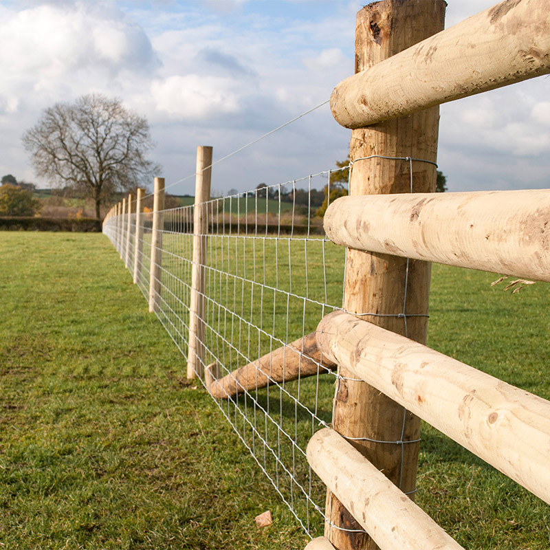 livestock fencing with wooden post