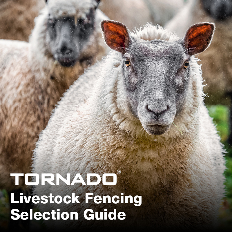 Livestock_selection_guide_main
