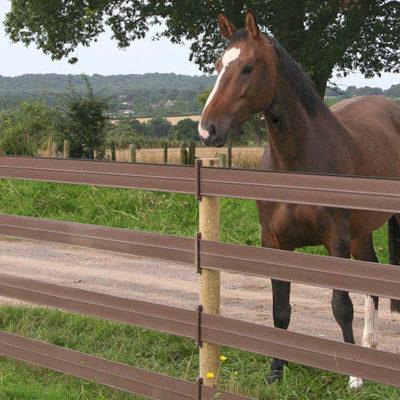 Horse-fencing-centaur-3