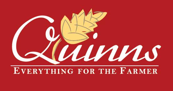 Quinns-logo-Everything