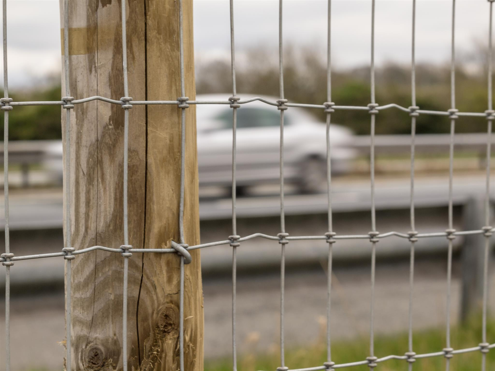 Close up of Torus road fencing