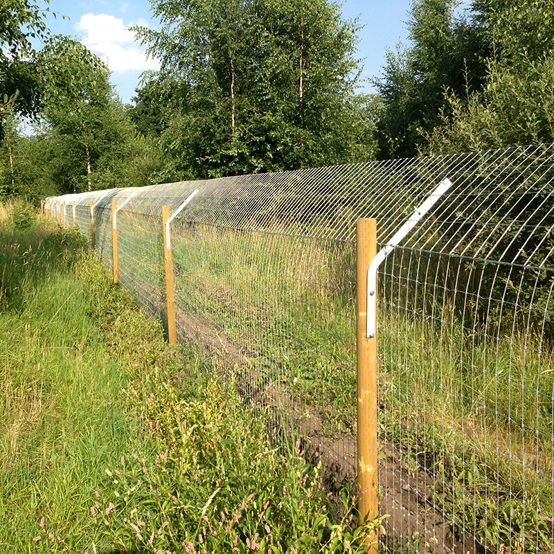 Otter_fencing_gallery_1