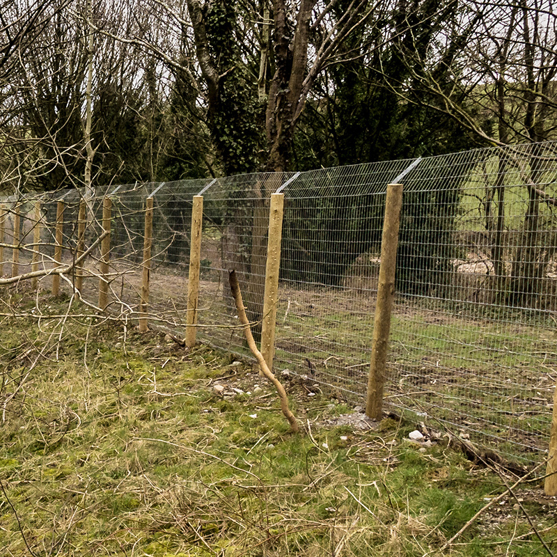 Otter_fencing_gallery_3