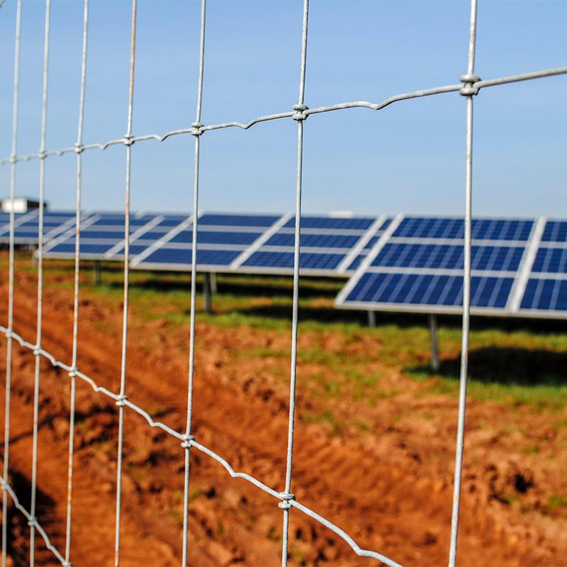 Solar_farm_fencing_gallery_3