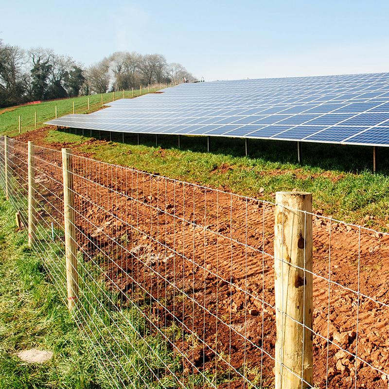 Solar_farm_fencing_gallery_5