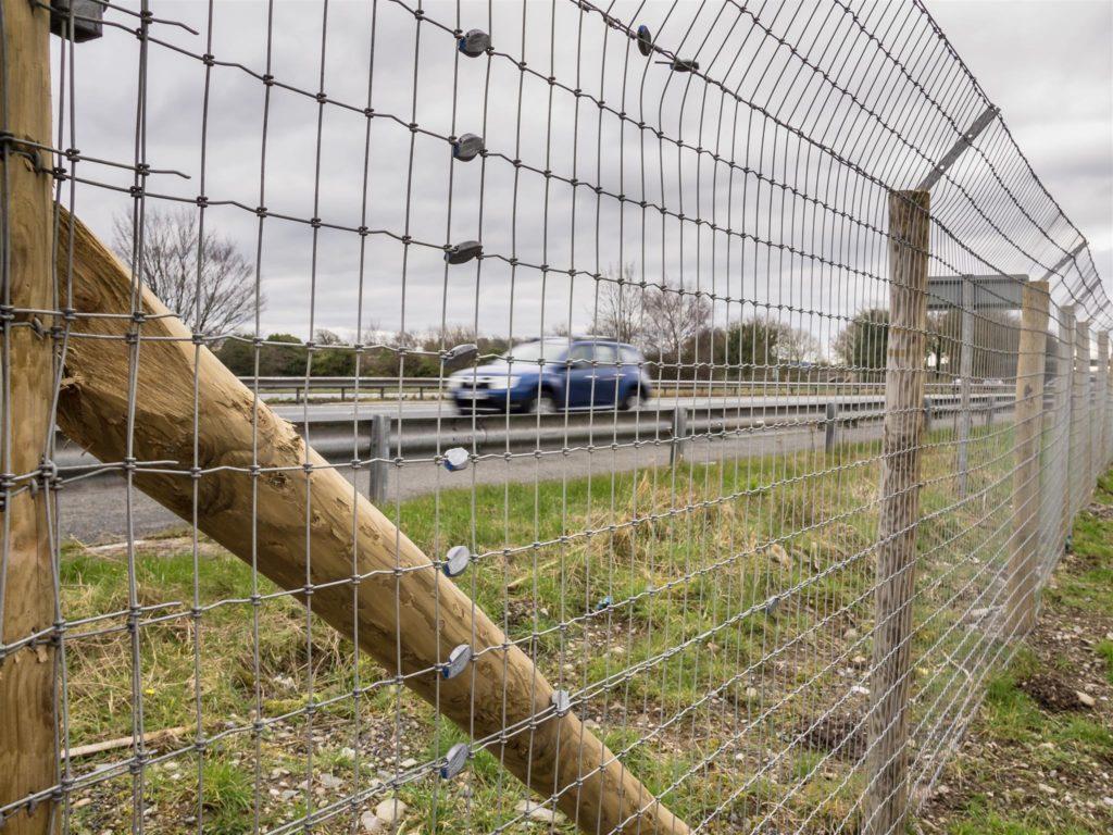 road-fencing3-1024x768