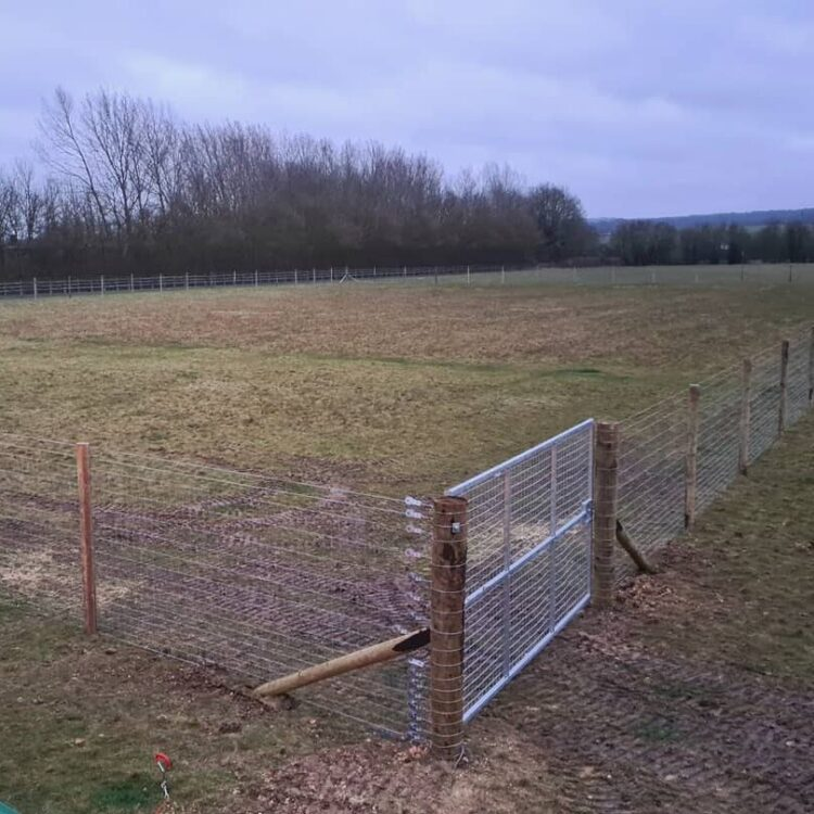 Dog Field Fence PDR Contracting