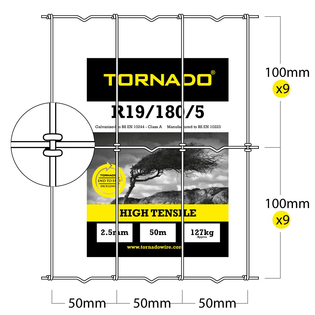 r19805 image